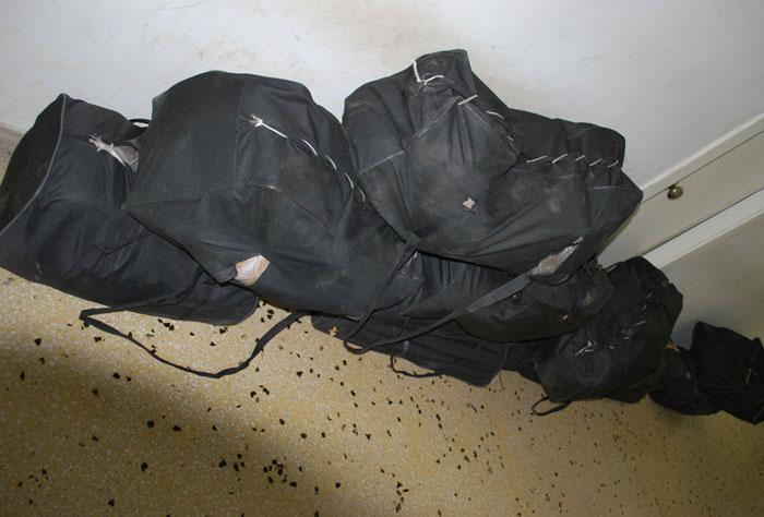Ήγουμενίτσα: Κατασχέθηκαν σε δασική περιοχή δέκα σάκοι με πάνω από 199 κιλά κάνναβης