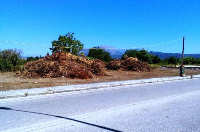 Δήμος Αρταίων: Άμεσος καθαρισμός των ιδιωτικών οικοπέδων