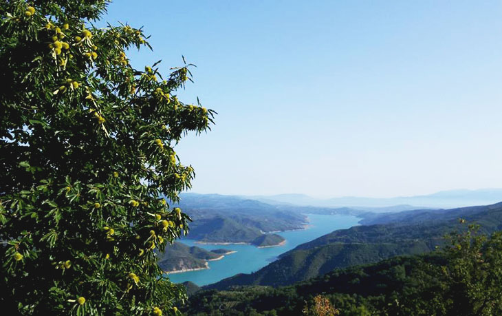 Άρτα: Εναλλακτικές καλλιέργειες μοχλοί ανάπτυξης των ορεινών και ημιορεινών περιοχών της Άρτας