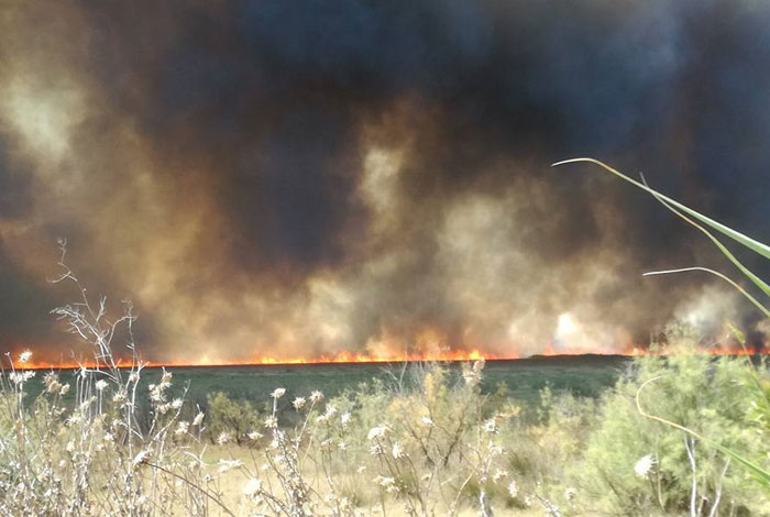 Άρτα: Κινδύνεψε από μεγάλη φωτιά το Ψαθοτόπι Άρτας